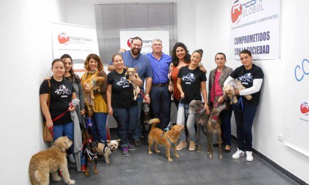 I Concurso de mascotas de La Rincona